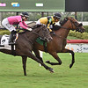Director's Cut - Maiden Win, Gulfstream Park, July 23, 2020<br /> Coglianese Photos/Lauren King