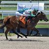 Darla - Maiden Win, Gulfstream Park, May 29, 2020<br /> Coglianese Photos/Lauren King
