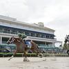 Go Jo Jo Go wins the 2020 FTBOA Florida Sire Desert Vixen Stakes at Gulfstream Park<br /> Coglianese Photos/Lauren King