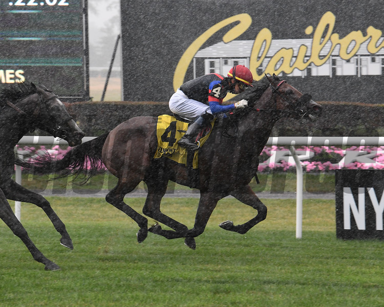 I'llhandalthecash wins the 2020 License Fee Stakes at Belmont Park<br /> Coglianese Photos