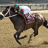 Firenze Fire wins the 2020 True North Stakes at Belmont Park<br /> Coglianese Photos/Chelsea Durand