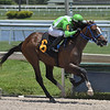Paladio - Maiden Win, Gulfstream Park, May 28, 2020<br /> Coglianese Photos/Ryan Thompson