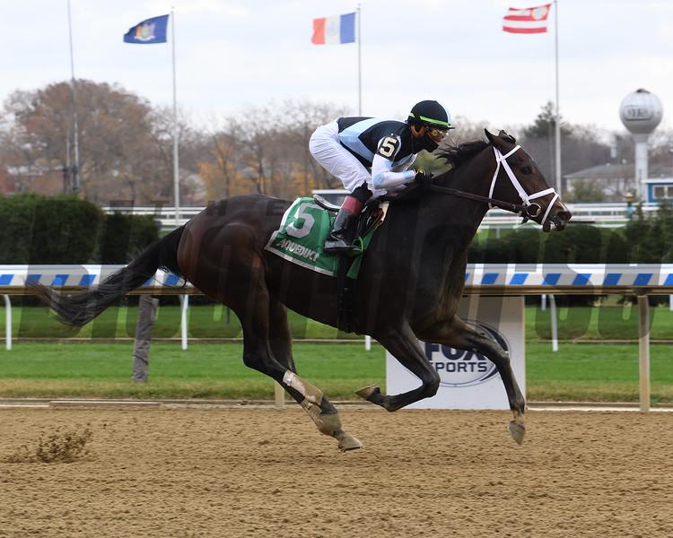 Vacay wins the Key Cents Stakes Sunday, November 15, 2020 at Aqueduct. Photo: Coglianese Photos/Susie Raisher