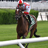 Newspaperofrecord wins the 2020 Intercontinental Stakes at Belmont Park<br /> Coglianese Photos/Joe Labozzetta
