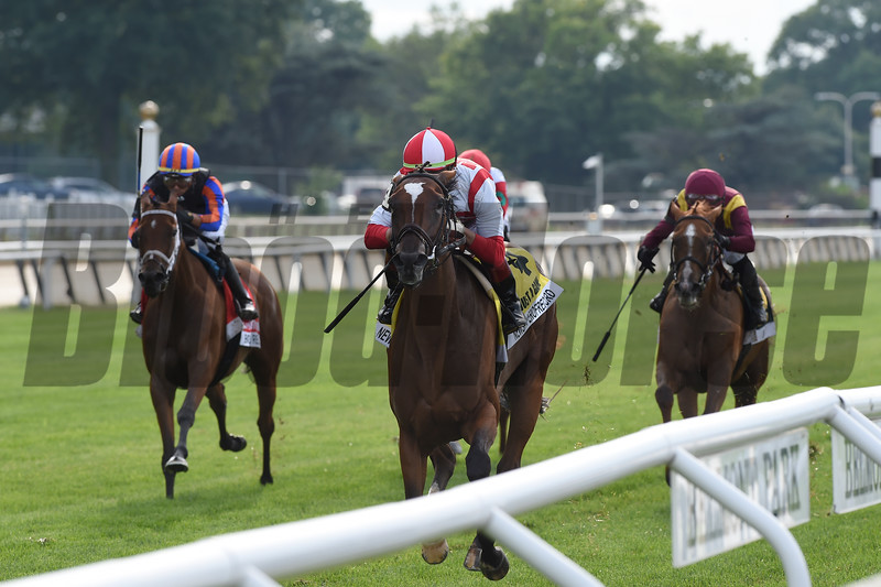Newspaperofrecord wins the 2020 Just a Game Stakes at Belmont Park<br /> Coglianese Photos/Chelsea Durand