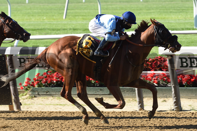 Captain Bombastic wins the Mike Lee Stakes at Belmont Park<br /> Coglianese Photos