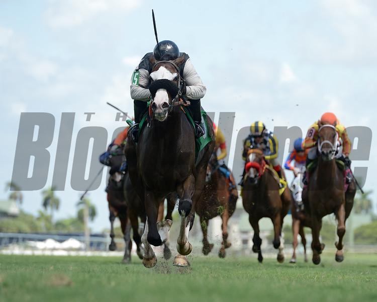 I Get It - Maiden Win, Gulfstream Park, August 28, 2020<br /> Coglianese Photos/Ryan Thompson