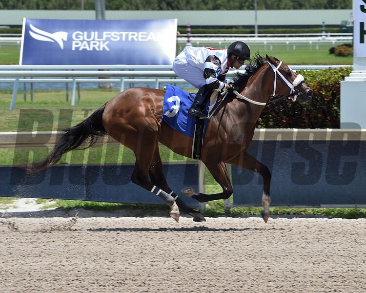 Princess Secret - Maiden Win, Gulfstream Park, May 7, 2020  <br /> Coglianese Photos/Lauren King