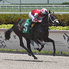 Con Lima - Maiden Win, Gulfstream Park, July 31, 2020<br /> Coglianese Photos/Ryan Thompson