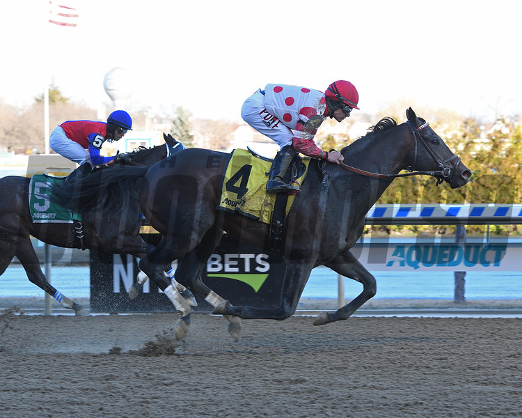 Mind Control wins the 2020 Tom Fool at Aqueduct<br /> Coglianese Photos/Annette Jasko