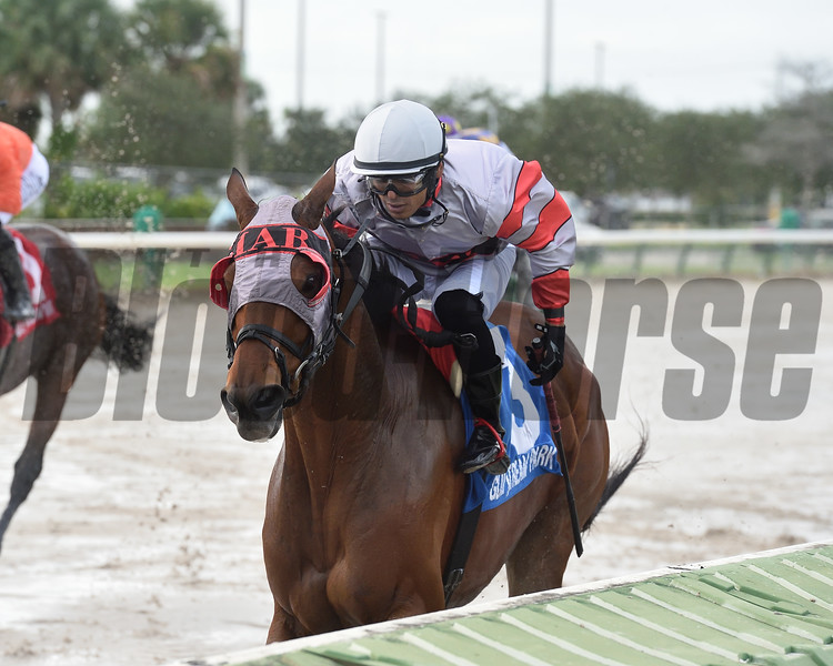 Quenane wins the 2020 Millions Classic Preview Stakes at Gulfstream Park West<br /> Coglianese Photos/Ryan Thompson