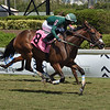 Mimina's Team - Maiden Win, Gulfstream Park, April 2, 2020<br /> Coglianese Photos/Lauren King