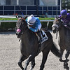 Violent Times wins the 2020 Ana T. Stakes at Gulfstream Park<br /> Coglianese Photos/Lauren King
