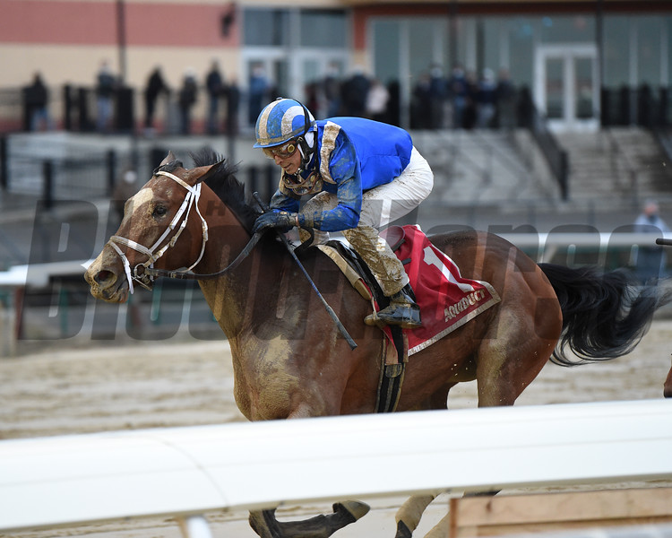 Malathaat wins the 2020 Demoiselle Stakes at Aqueduct  <br /> Coglianese Photos/Chelsea Durand