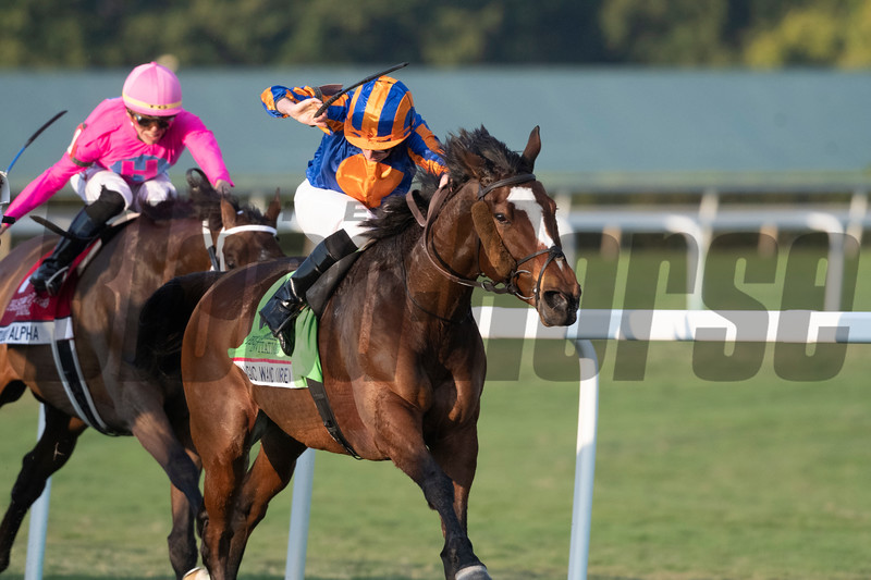 Magic Wand leads the pack in the 2020 Pegasus World Cup Turf Invitational Stakes before finishing second.<br /> Joe DiOrio