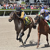 With Verve wins the 2020 Hutcheson Stakes at Gulfstream Park  <br /> Coglianese Photos/Ryan Thompson