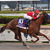 Mucho Gusto wins 2020 Pegasus World Cup Invitational at Gulfstream Park. Photo: Coglianese Photos