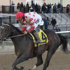 Mind Control wins the 2020 Tom Fool at Aqueduct<br /> Coglianese Photos/Elsa Lorieul