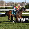 Lead Guitar wins the 2020 Autumn Days Stakes at Aqueduct<br /> Coglianese Photos/Susie Raisher