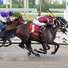 Noble Drama wins the 2020 Sunshine Millions Classic at Gulfstream Park<br /> Coglianese Photos/Lauren King