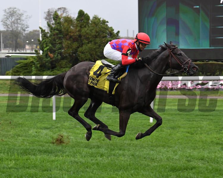 Myhartblongstodady wins the 2020 Ticonderoga Stakes at Belmont Park<br /> Coglianese Photos/Susie Raisher
