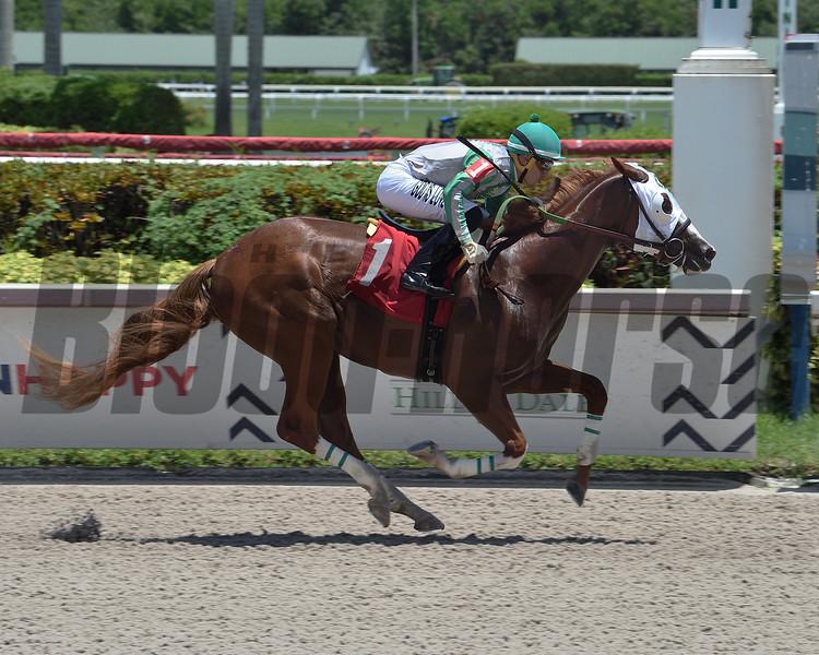 Tiger wins maiden special weight Sunday, August 9, 2020 at Gulfstream Park. Photo: Coglianese Photos/Lauren King