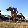 Swiss Skydiver wins the 2020 Alabama Stakes at Saratoga<br /> Coglianese Photos