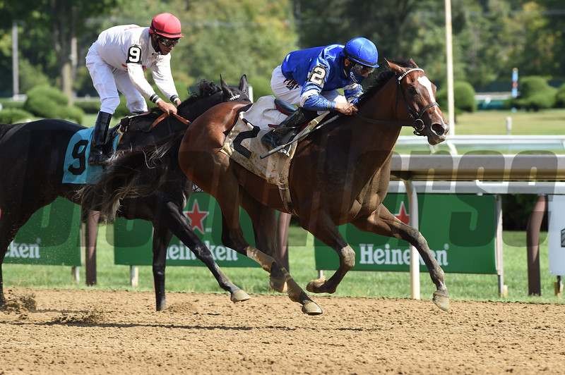 Jane Grey wins maiden special weight Sunday, September 6, 2020 at Saratoga Race Course. Photo: Coglianese Photos