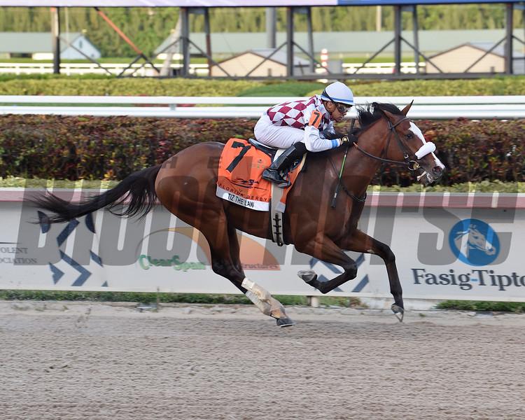 Tiz the Law wins the 2020 Florida Derby at Gulfstream Park. Photo: Coglianese Photos/Lauren King