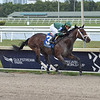 Dr Post wins the 2020 Unbridled Stakes at Gulfstream Park<br /> Coglianese Photos/Lauren King