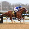 Arthur's Hope wins the 2020 Say Florida Sandy Stakes at Aqueduct<br /> Coglianese Photos/Chelsea Durand