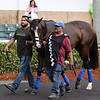 Admission Office - Gulfstream Park, January 24, 2020<br /> Coglianese Photos