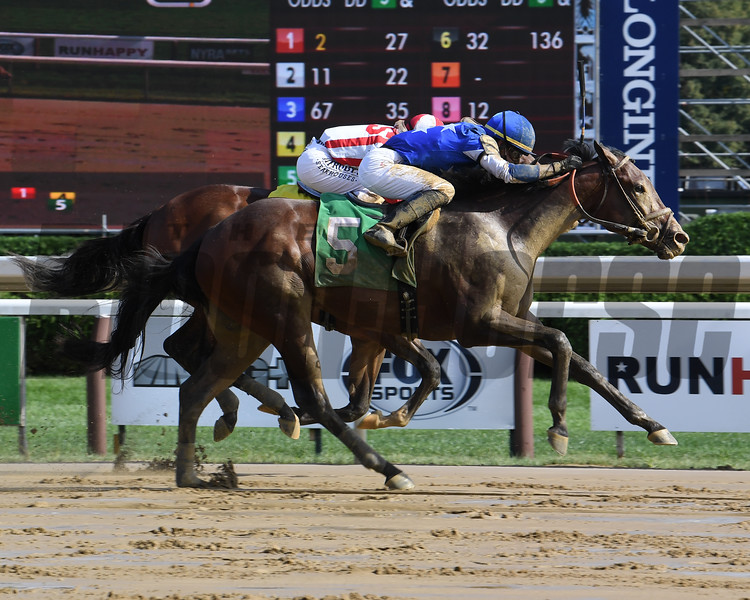 Founder - Maiden Win, Saratoga, August 29, 2020<br /> Coglianese Photos