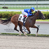 Flying Aletha Maiden Win<br /> Edgar Prado breaks Cordero's career win record<br /> Gulfstream Park, May 21, 2020<br /> Coglianese Photos/Lauren King