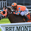 Somelikeithotbrown wins the 2020 Mohawk Stakes at Belmont Park<br /> Coglianese Photos/Joe Labozzetta