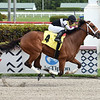 Proprioception - Maiden Win, Gulfstream Park, March 11, 2020<br /> Coglianese Photos/Lauren King