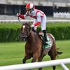 Newspaperofrecord wins the 2020 Intercontinental Stakes at Belmont Park<br /> Coglianese Photos/Joe Labozzetta
