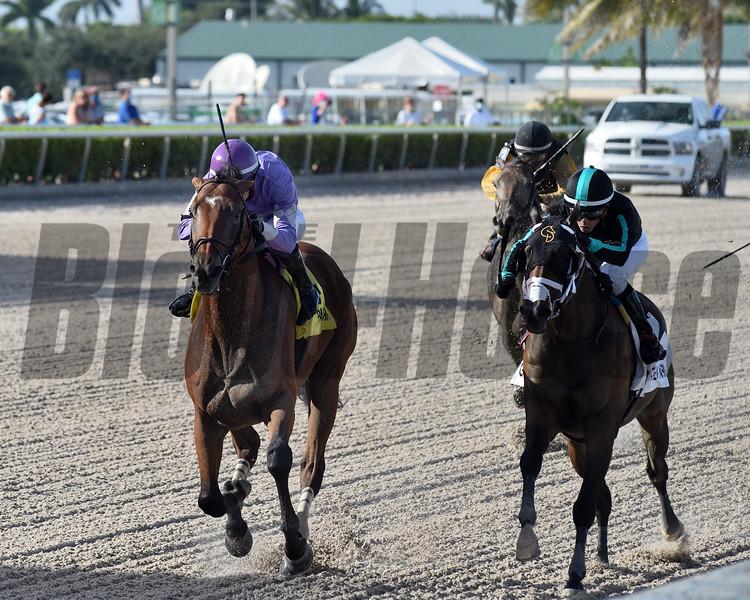 Cool Arrow wins the 2020 Smile Sprint Stakes at Gulfstream Park<br /> Coglianese Photos/Ryan Thompson