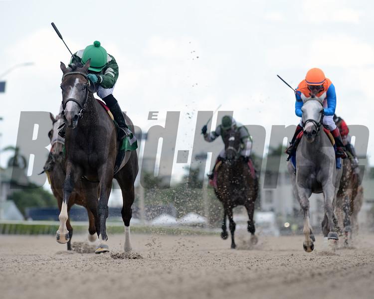 Oh Deborah - Maiden Win, Gulfstream Park, July 19, 2020<br /> Coglianese Photos/Ryan Thompson
