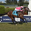 Ever Dangerous - Maiden Win, Gulfstream Park, April 2, 2020<br /> Coglianese Photos/Lauren King