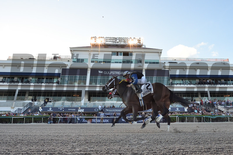 Chance It wins the 2020 Mucho Macho Man Stakes at Gulfstream Park<br /> Coglianese Photos/Ryan Thompson