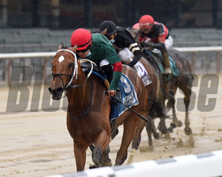 Honey I'm Good wins the 2020 Harmony Lodge Stakes at Belmont Park<br /> Coglianese Photos/Chelsea Durand