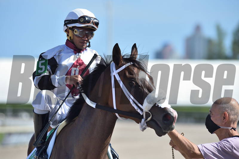 Princess Secret wins the 2020 FTBOA Florida Sire Susan's Girl Stakes<br /> Coglianese Photos/Ryan Thompson