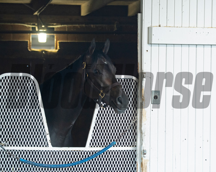 Caption:<br /> Midnight Bisou at Keeneland on May 2, 2020 Keeneland in Lexington, KY.