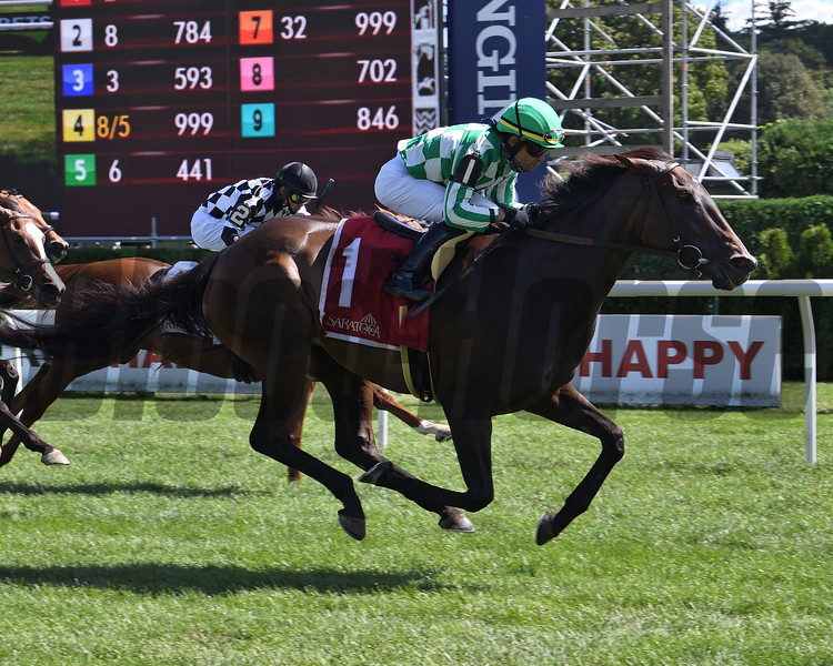 Civil Union wins the 2020 Glens Falls Stakes at Saratoga<br /> Coglianese Photos/Susie Raisher
