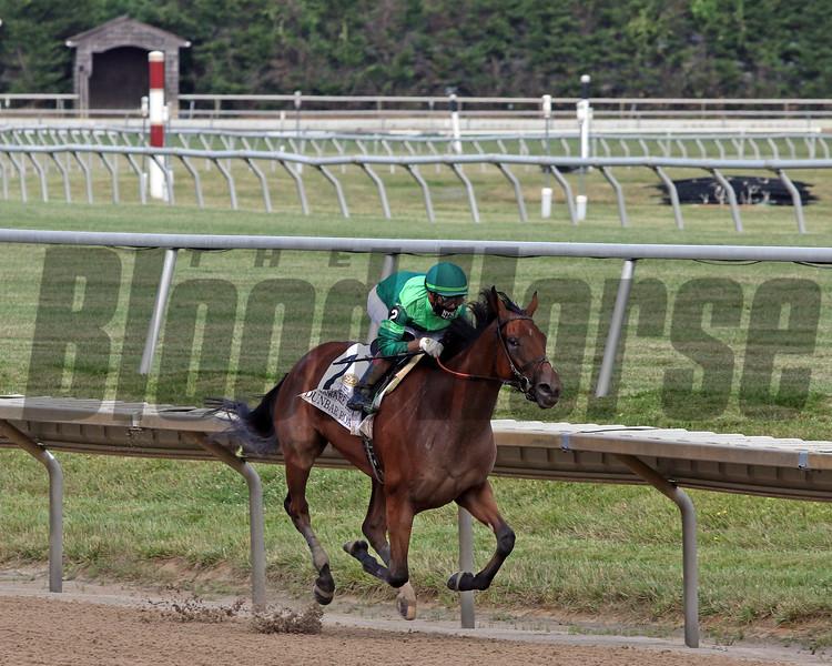 Dunbar Road with Irad Ortiz win the 83rd Running of the Delaware Handicap (GII) at Delaware Park on July 11, 2020. Photo By: Chad B. Harmon