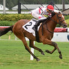 Spanish Loveaffair - Maiden Win, Gulfstream Park, July 23, 2020<br /> Coglianese Photos/Ryan Thompson
