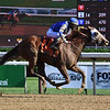 Mystic Guide wins the 2020 Jim Dandy Stakes at Saratoga<br /> Coglianese Photos/Susie Raisher