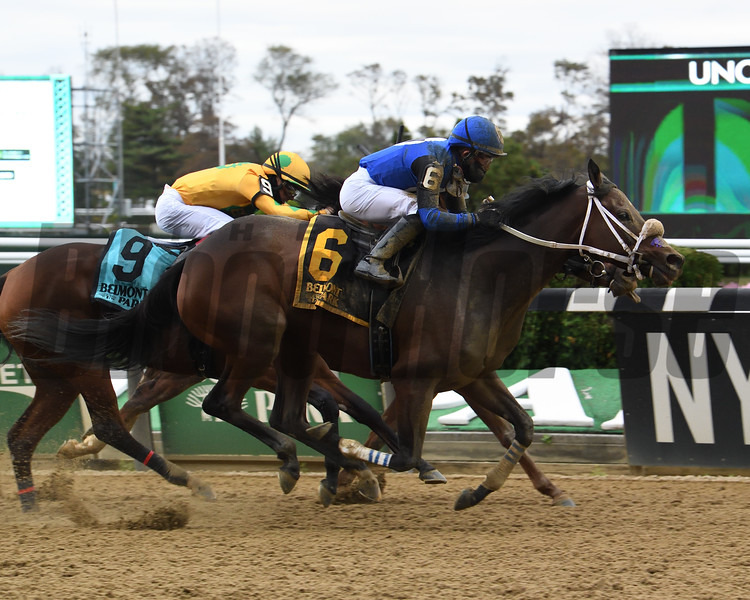 Collegeville Girl wins the 2020 Iroquois Stakes at Belmont Park<br /> Coglianese Photos/Susie Raisher