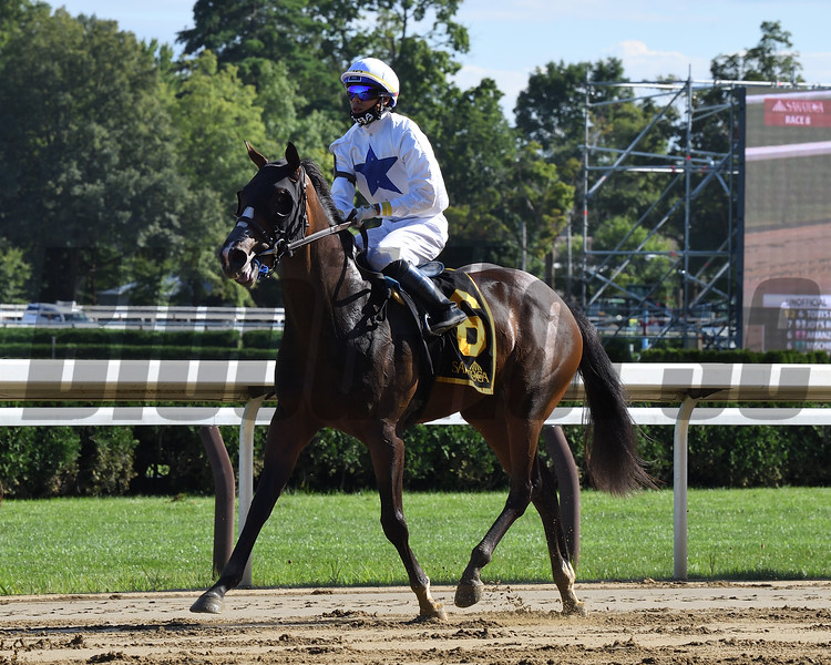 Tobys Heart wins the Bolton Landing Stakes Wednesday, August 19, 2020 at Saratoga. Photo: Coglianese Photos/Susie Raisher